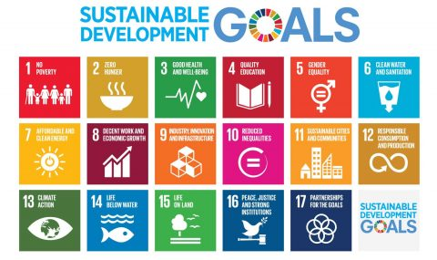 Sustainable Development Goals Youth Training- McGill University