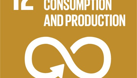 SDG12: Responsible Consumption and Production