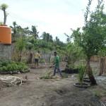 Workers tending to garden